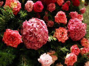 St-Regis-Flower-Wall